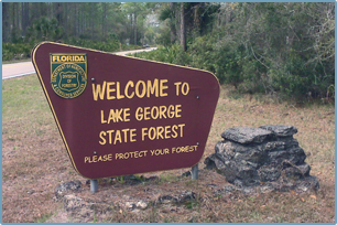 Lake George State Forest